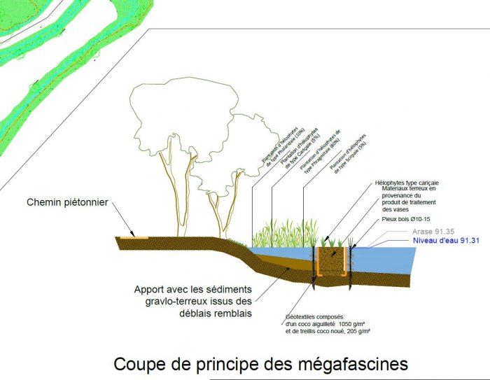 Coupe Mégafascines